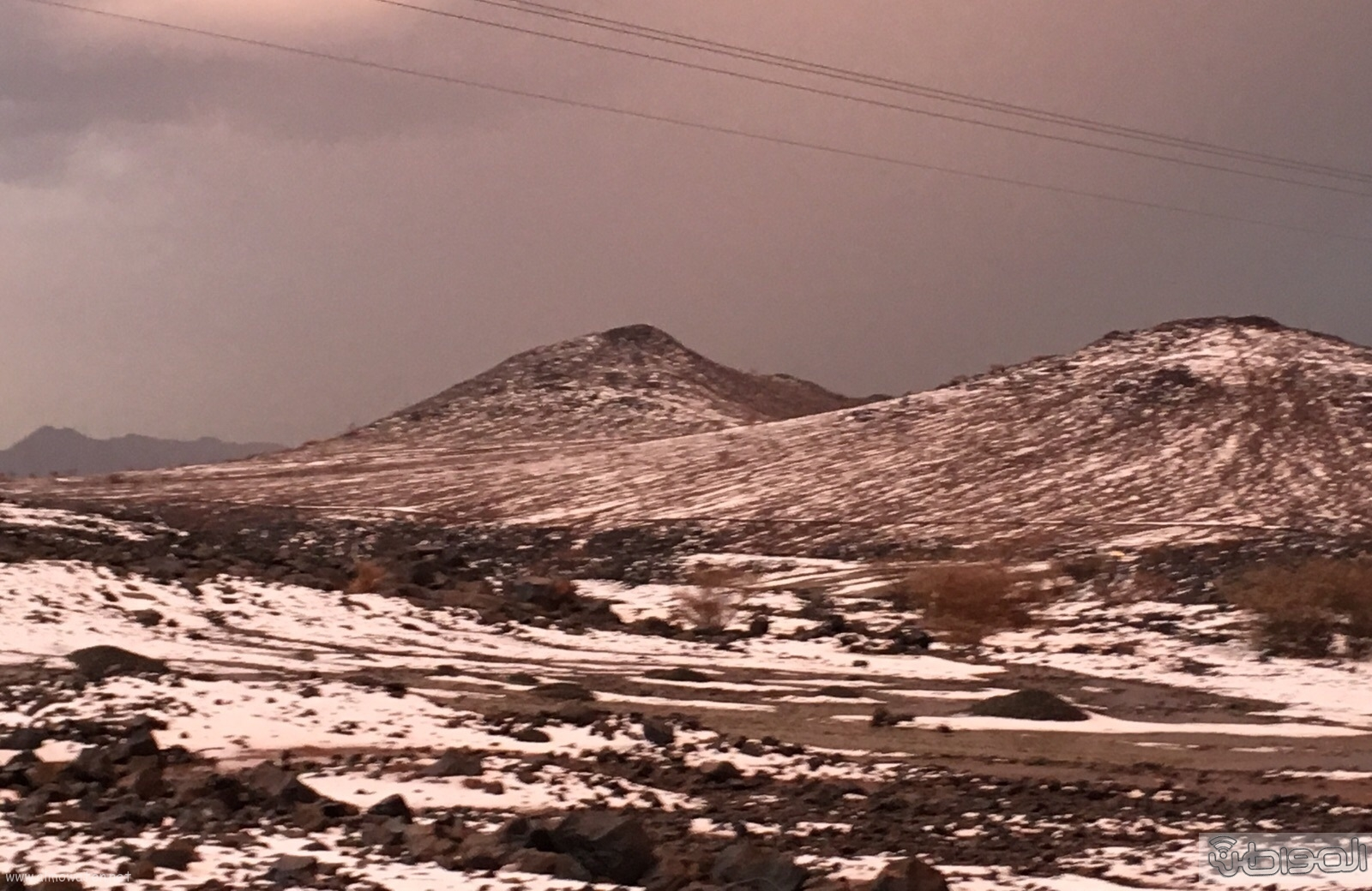 جبال المواريد تكتسي باللون الابيض الناصع بتشكيلة اوربية (1)