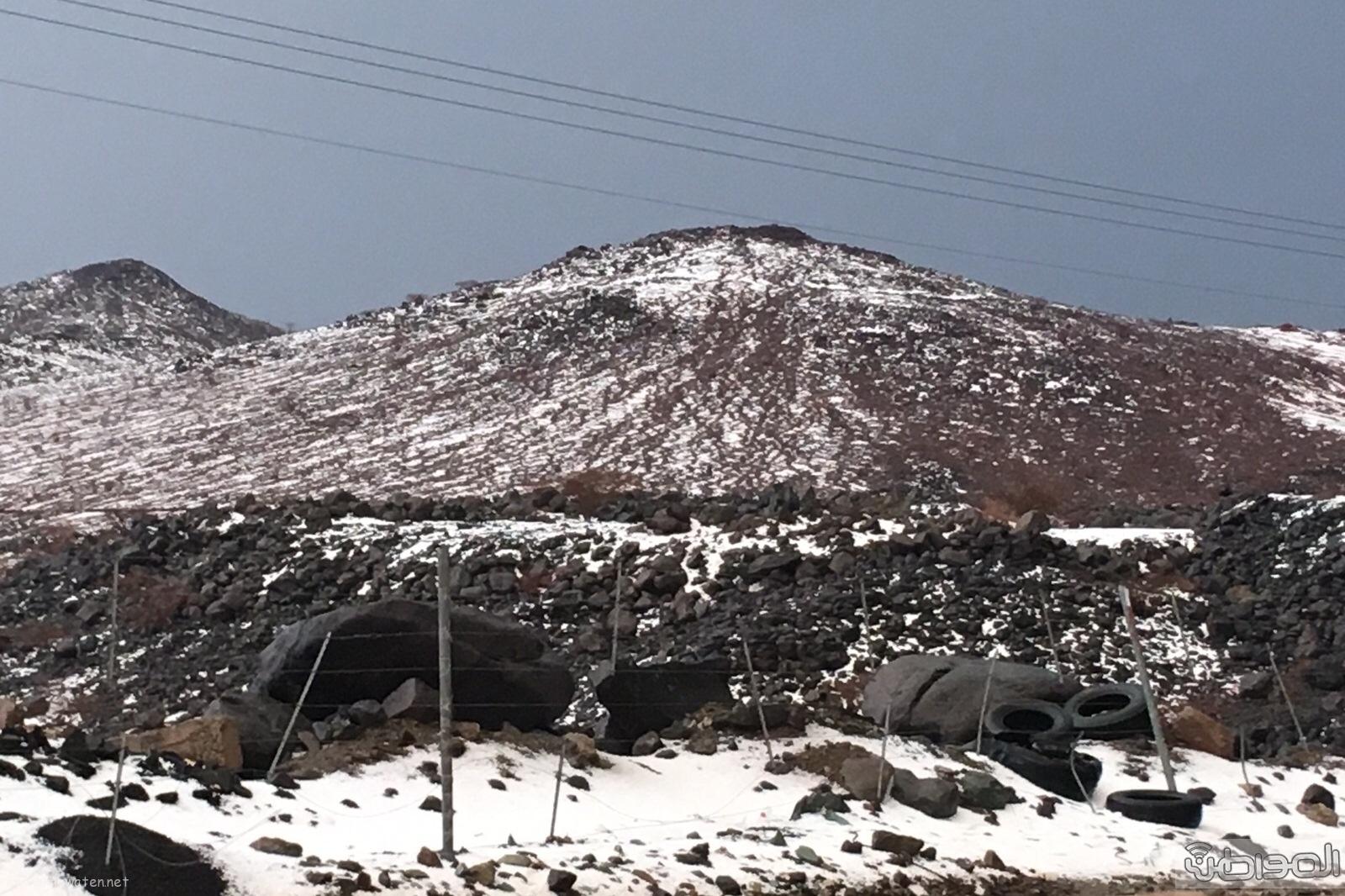 جبال المواريد تكتسي باللون الابيض الناصع بتشكيلة اوربية (9)