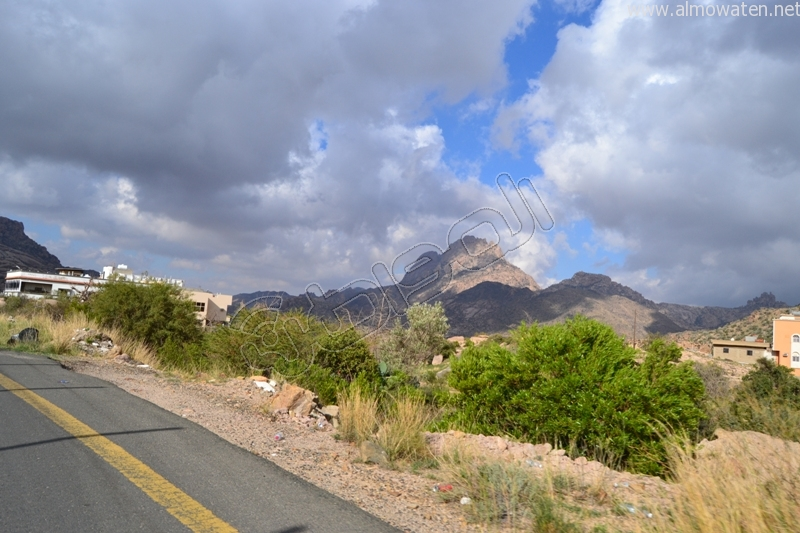 جبال #ثقيف ومروجها تصنع لوحة خلابة (10)