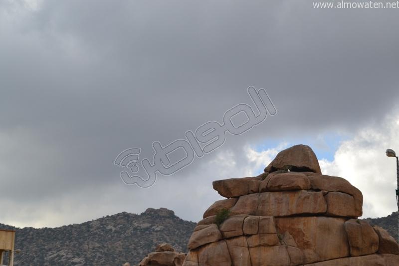 جبال #ثقيف ومروجها تصنع لوحة خلابة (11)