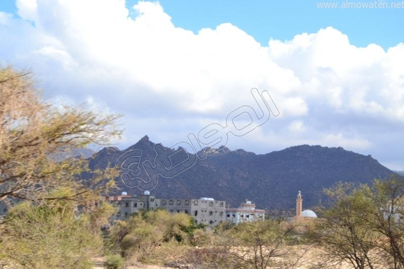 جبال #ثقيف ومروجها تصنع لوحة خلابة (2)