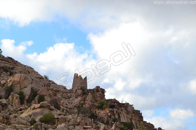 جبال #ثقيف ومروجها تصنع لوحة خلابة (5)