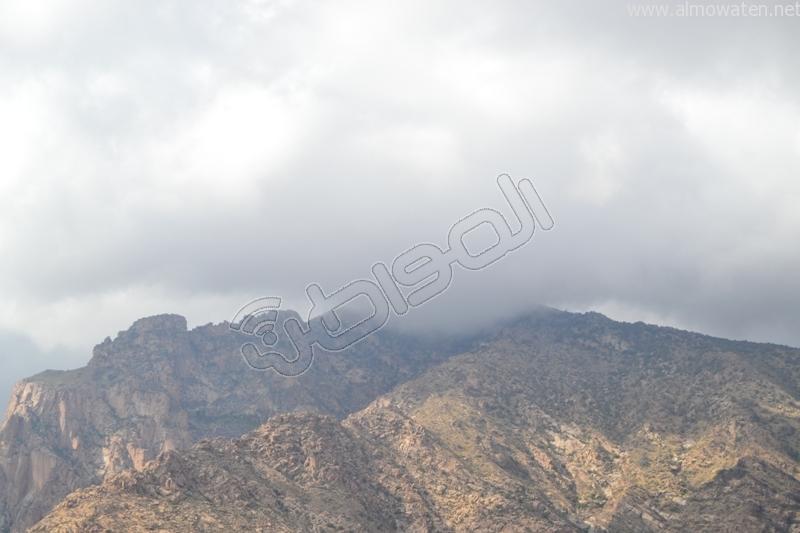 جبال #ثقيف ومروجها تصنع لوحة خلابة (7)