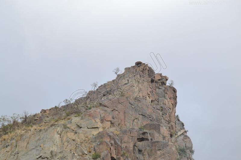 جبال #ثقيف ومروجها تصنع لوحة خلابة (8)