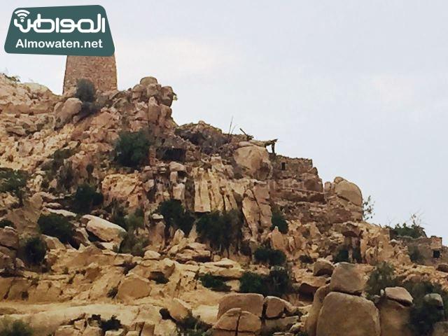 جبال ومرتفعات ترعة ثقيف وبساط أخضر تكتسي به قرى وهجر جنوب الطائف وخاصة في ترعة ثقيف صحيفة المواطن (4)