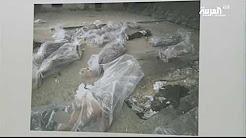 بالفيديو.. إسبانية تكتشف مقتل أخيها في سجون الأسد صدفة - المواطن