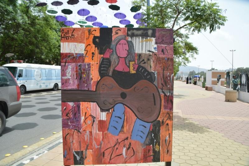 جداريات شارع الفن ابها (1)
