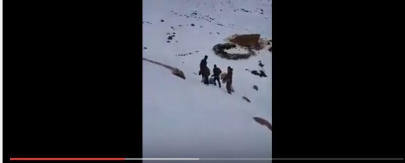 فيديو صادم.. خرجوا لرحلة ترفيهية فصادفتهم امرأة وأولادها وسط الجليد