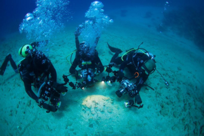 جمال البيئات البحرية في شواطئ تبوك1
