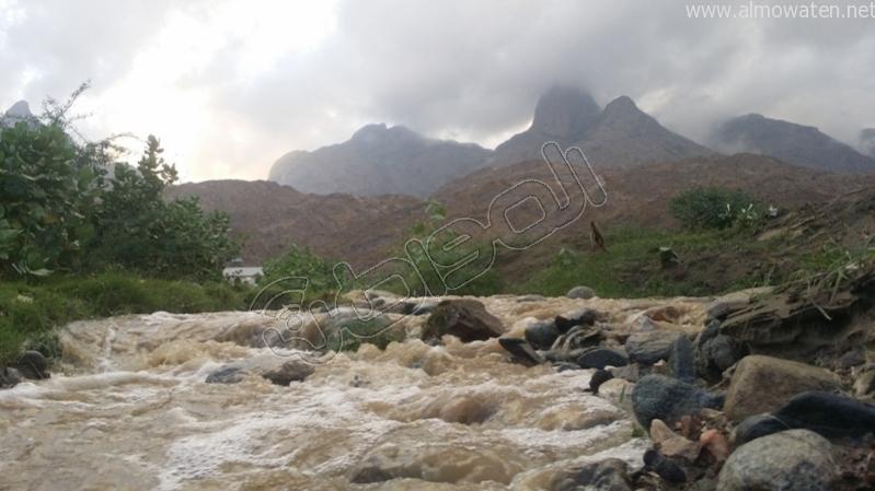 جمال طبيعة #وادي_العرج عقب الأمطار الغزيرة (4)