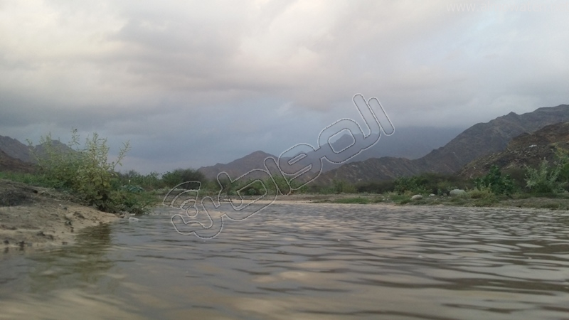 جمال طبيعة #وادي_العرج عقب الأمطار الغزيرة (6)