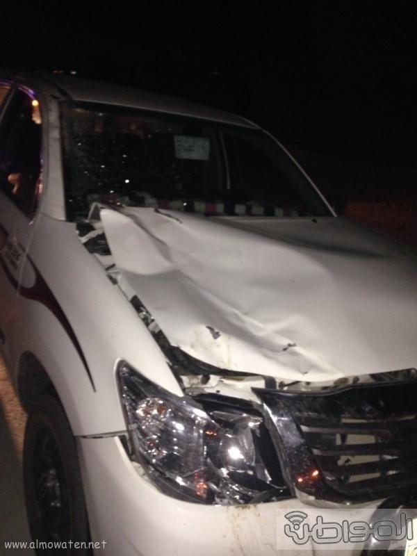 جمل سائب يصيب 3 شبان في حادثة اصطدام بالطائف (210638757) 