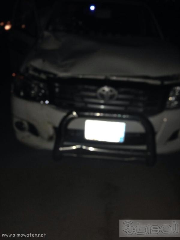 جمل سائب يصيب 3 شبان في حادثة اصطدام بالطائف (210638758) 