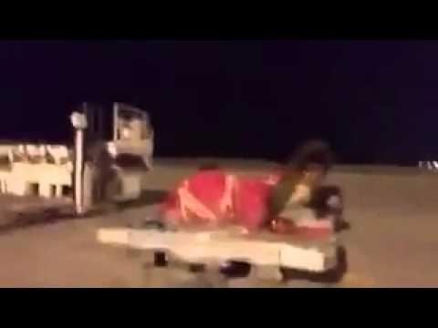 خليجي ينقل جماله بطائرة خاصة - الكويت