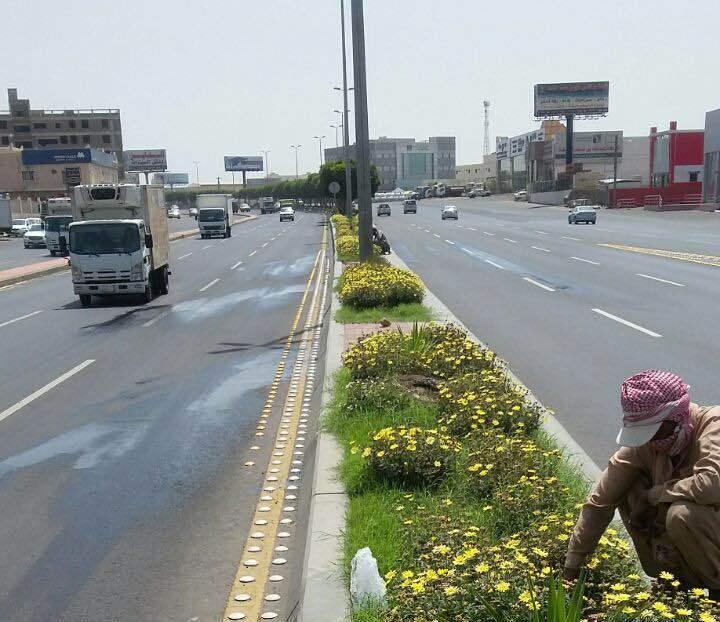حدائق جديدة تستقبل الزوار خلال أيام العيد بخميس مشيط (2)