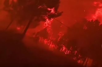 حرائق الغابات البرتغال
