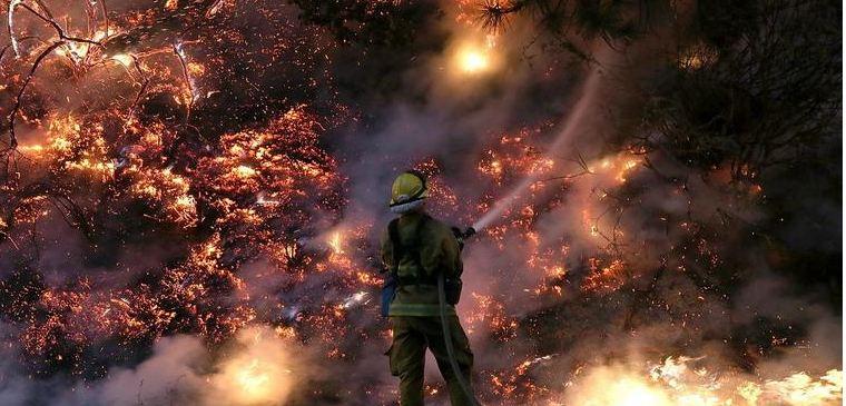 حرائق الغابات امريكا