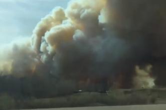 حرائق الغابات تقتل 11 شخصاً وتدمر 400 ألف هكتار في تشيلي - المواطن