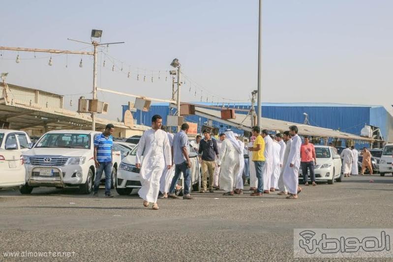 حراج السيارات بجنوب جدة6