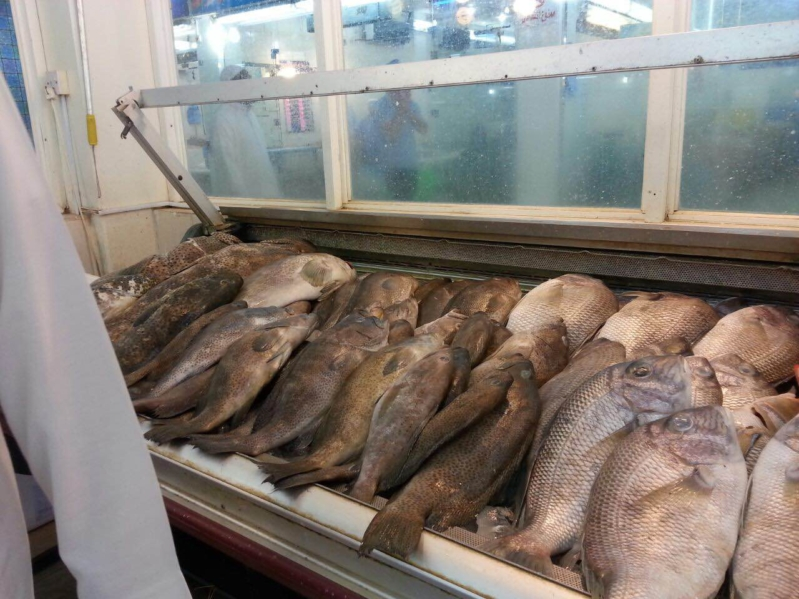 حرارة الاجواء واقتراب رمضان يسجلان ركودا في اسواق السمك بمكة (5)