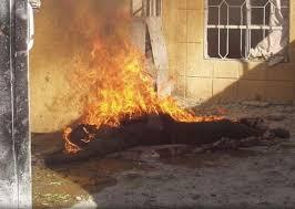 في دبي.. أحرقوا جثة صديقهم لطمس معالم الجريمة - المواطن