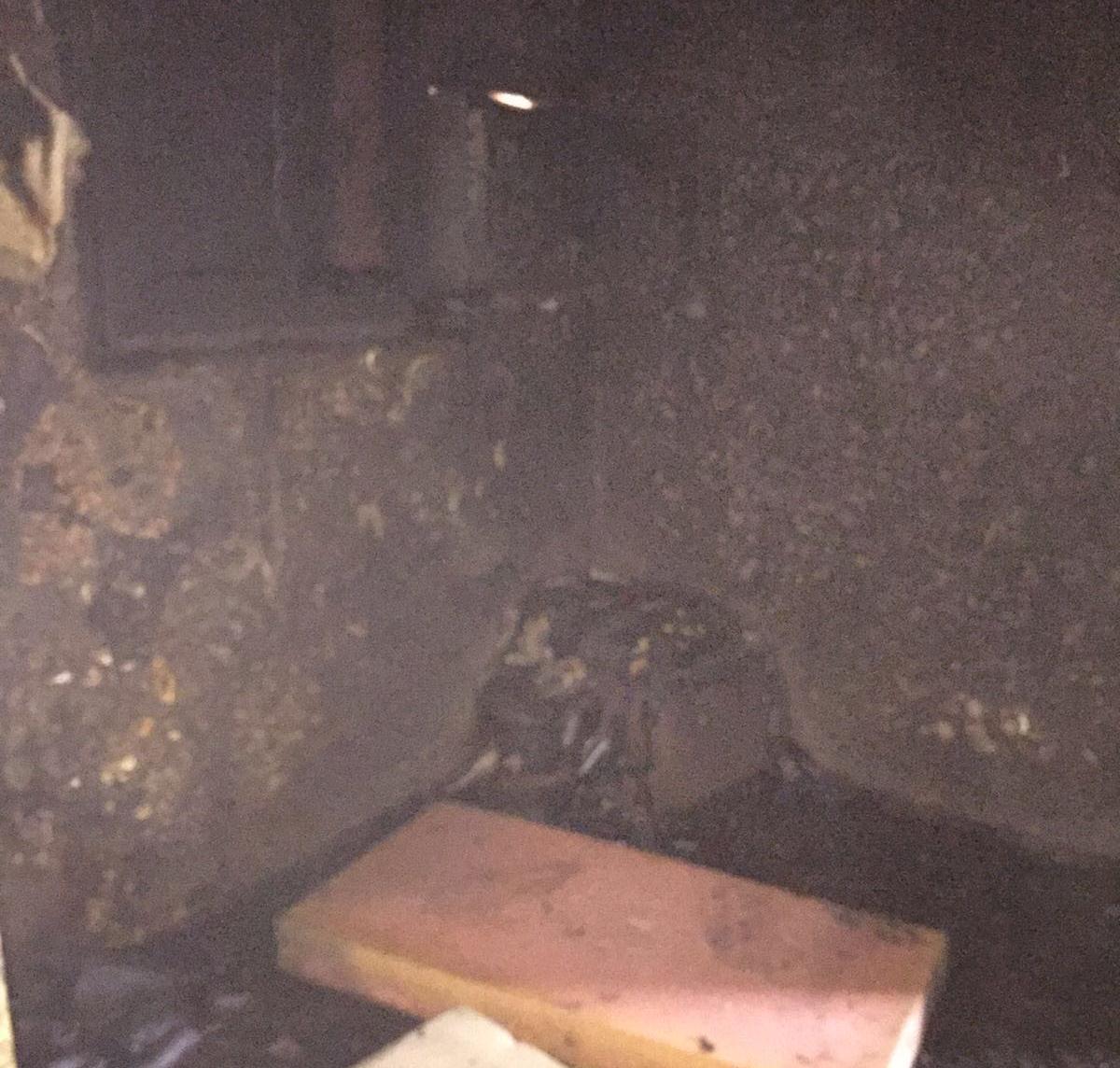 حريق جنوب حي الجامعة بجدة (3)