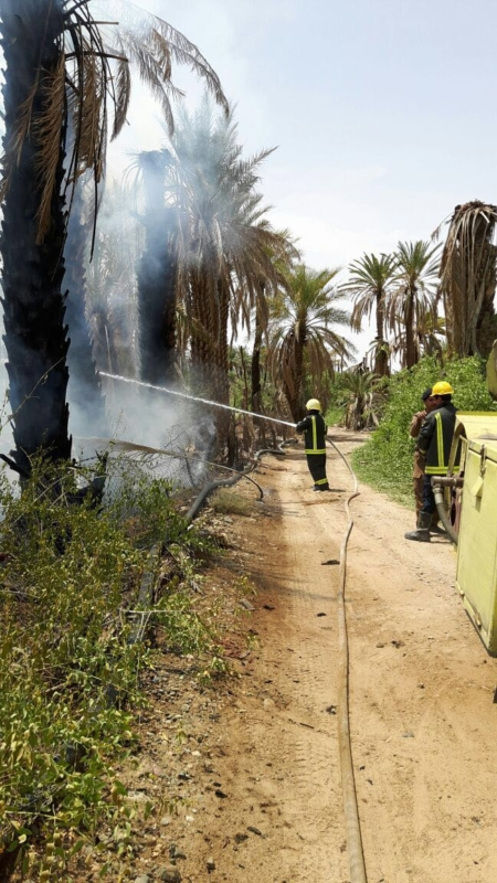 حريق مزرعة بيشة (1)