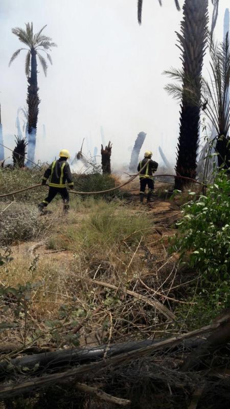 حريق مزرعة بيشة (2)