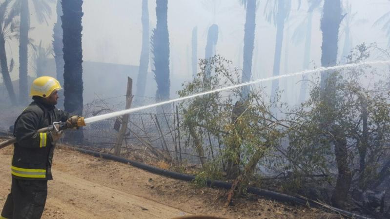 حريق مزرعة بيشة (3)
