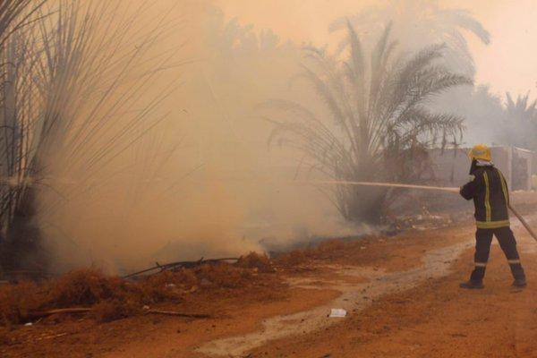 حريق هائل نخل بح العباس (3)