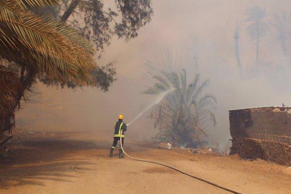 حريق هائل نخل بح العباس (4)