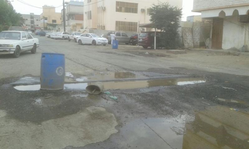 حفريات روضة جازان25