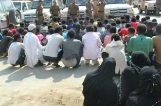 بالصور.. ضبط 3638 مخالفاً ومسروقات وأسلحة نارية بجازان - المواطن