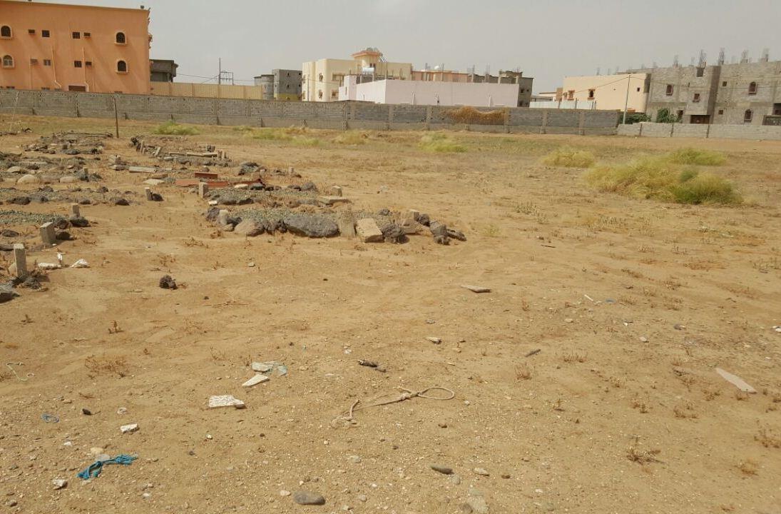 حملة تطوعية لنظافة مقابر الظبية وصيانتها (11)
