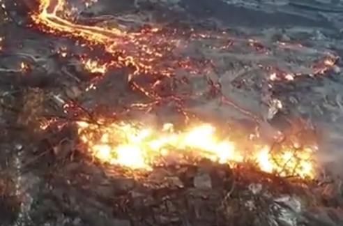 حمم بركانية بغابات هاواي
