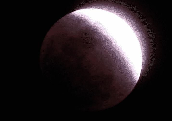 خسوف القمر يعيد تداول فيديو المغامسي بعد ٨ سنوات