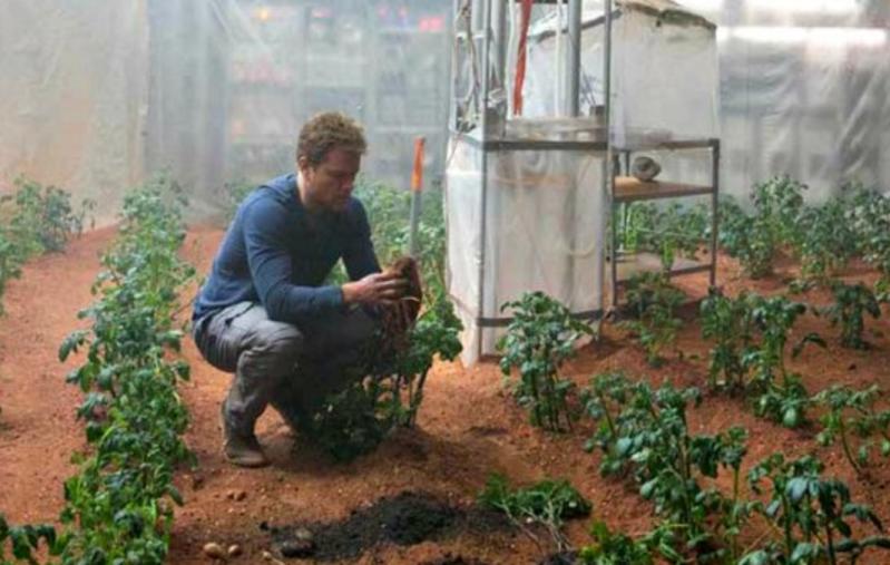 خضروات وحوب تنمو بتربة المريخ