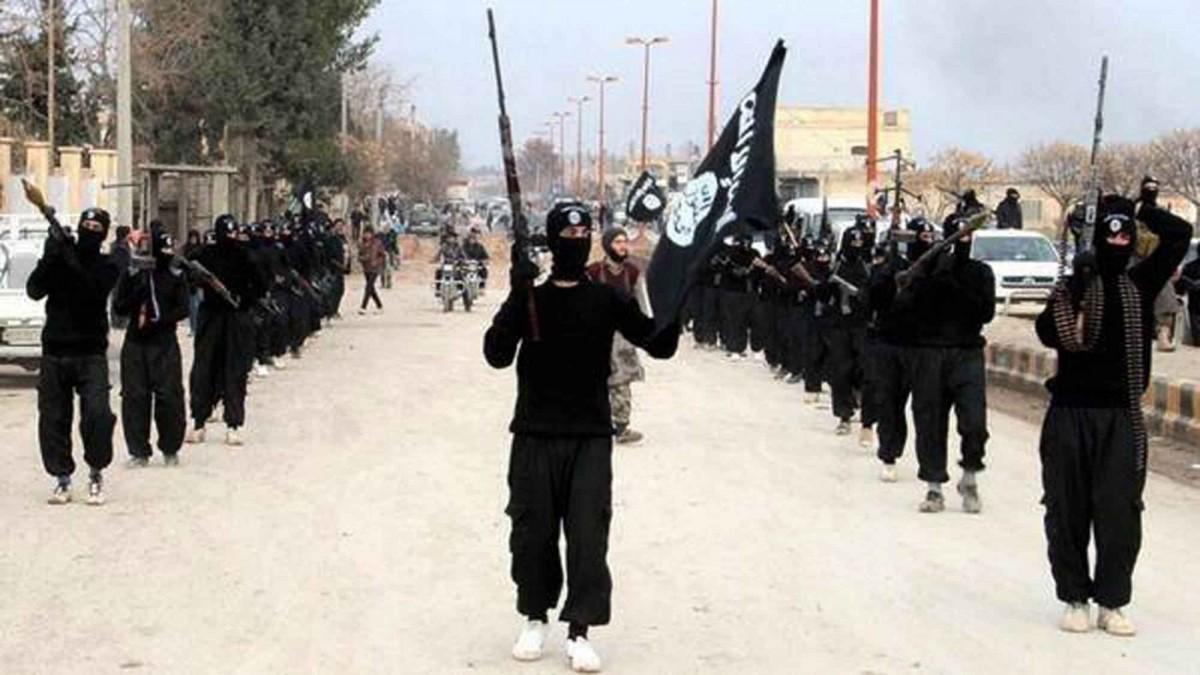 مقتل 14 داعشياً في هجوم فاشل على مواقع عسكرية بـ #العراق - المواطن