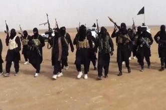 المملكة ضمن الدول الأنجح في القضاء على الإرهاب - المواطن
