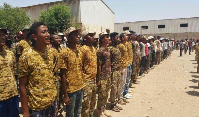دمج المقاومة الشعبية بالجيش الوطني اليمني