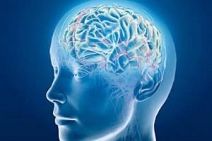 ذكريات-المخ