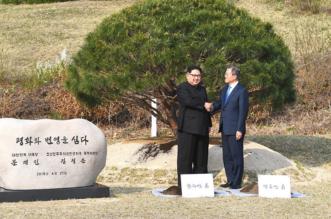 شجرة صنوبر عمرها 65 عامًا تنهي سباق التسلح النووي بين الكوريتين - المواطن