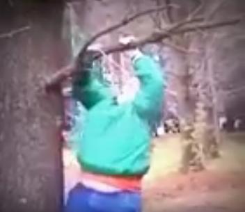 رجل-بدين-يتسلق-شجرة