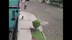 رجل يركل قط