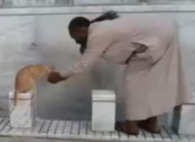 رجل يسقي قط بيده بالحرم المكي