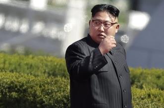 كوريا الشمالية تشكو أميركا: ستجلب كارثة للإنسانية - المواطن
