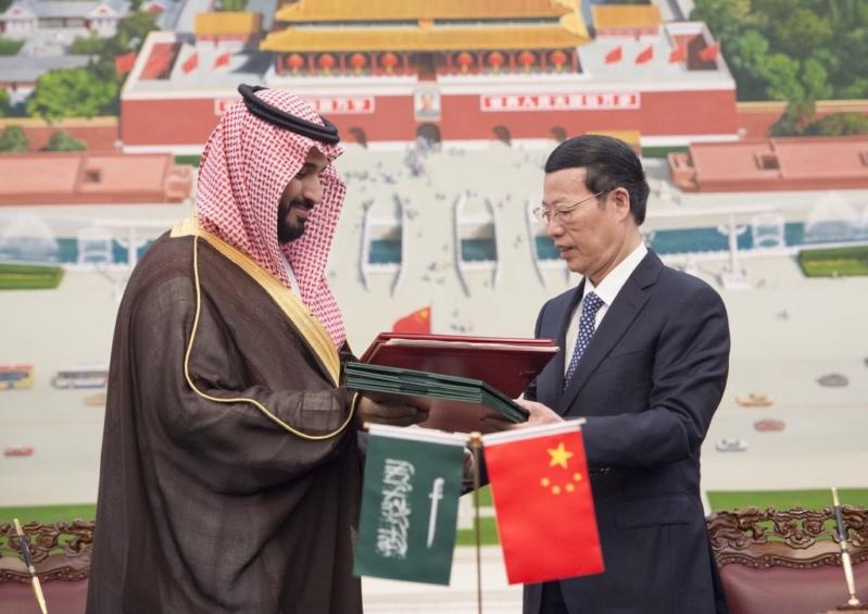 زيارة ولي ولي العهد للصين (15)