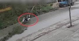 شاهد.. سائق منحوس يتلقى ضربة قوية من شجرة - المواطن