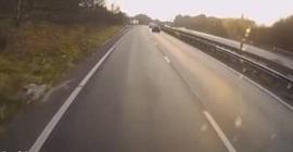 سائق يتسبب في كارثة مرورية