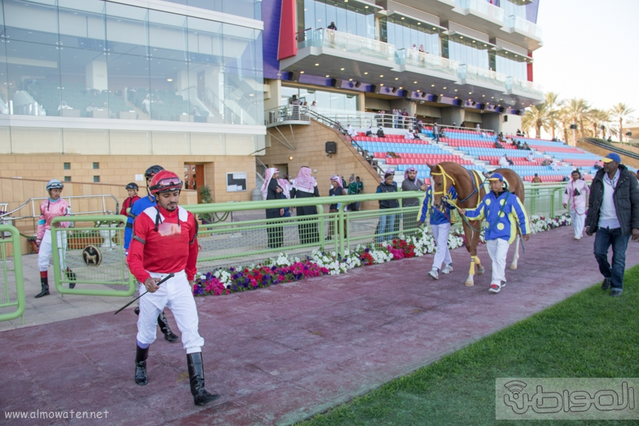 سباق نادي الفروسية بالرياض (4)